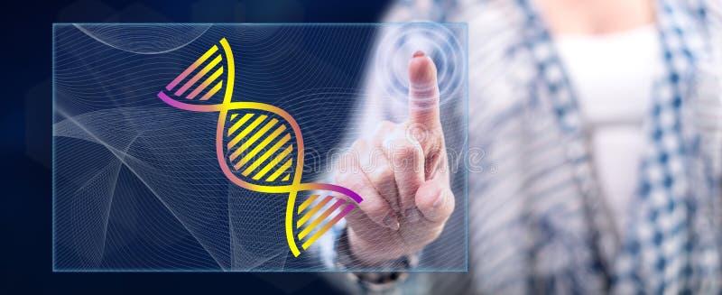 Женщина касаясь концепции генетических исследований стоковые фотографии rf
