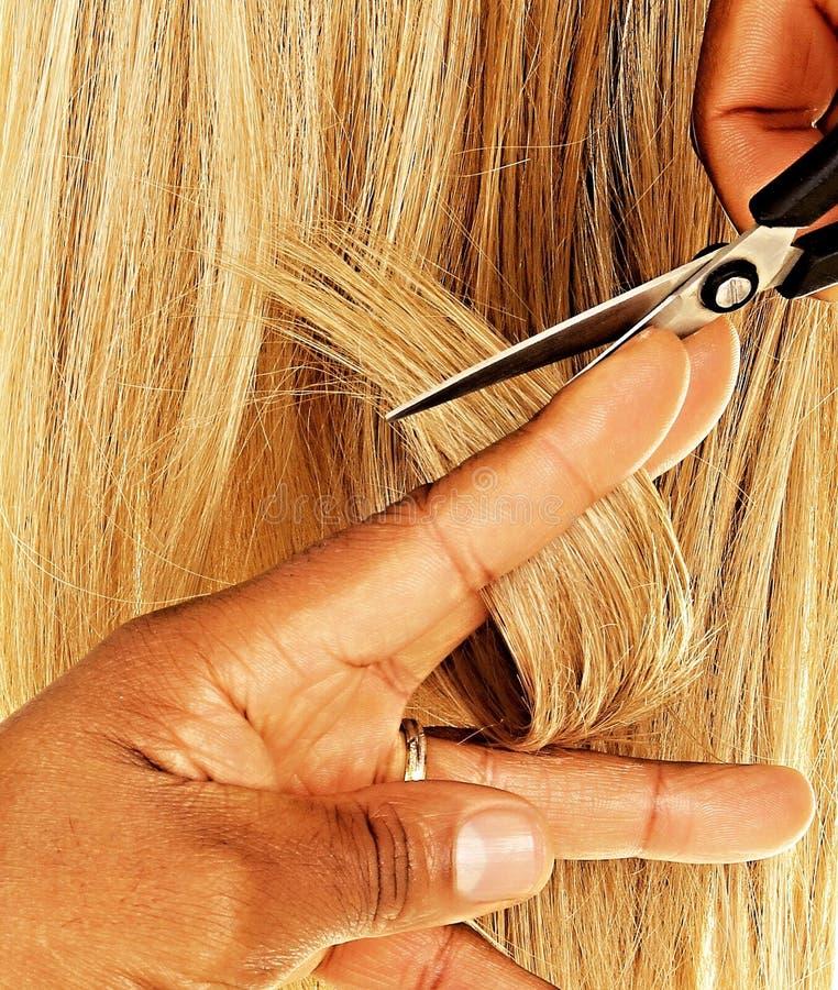 Женщина красоты с длинными здоровыми и сияющими ровными черными волосами стоковое фото