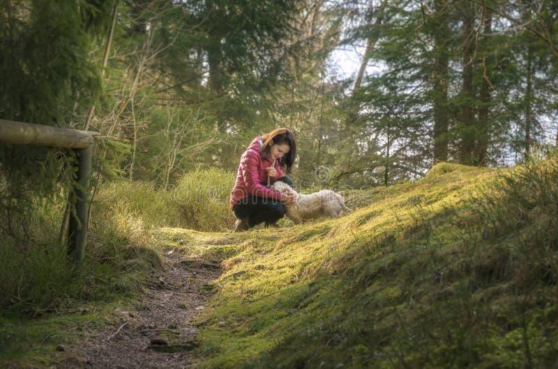 Женщина лаская ее собаку в лесе ели стоковое изображение rf