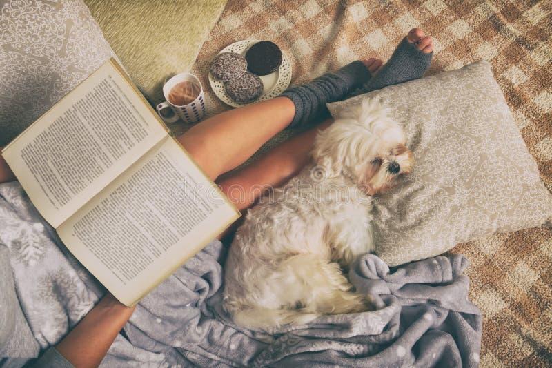 Женщина лежа на кровати с собакой стоковые изображения rf