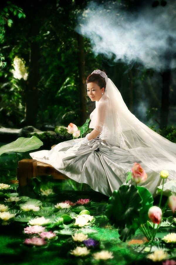 женщина лотоса стоковое изображение