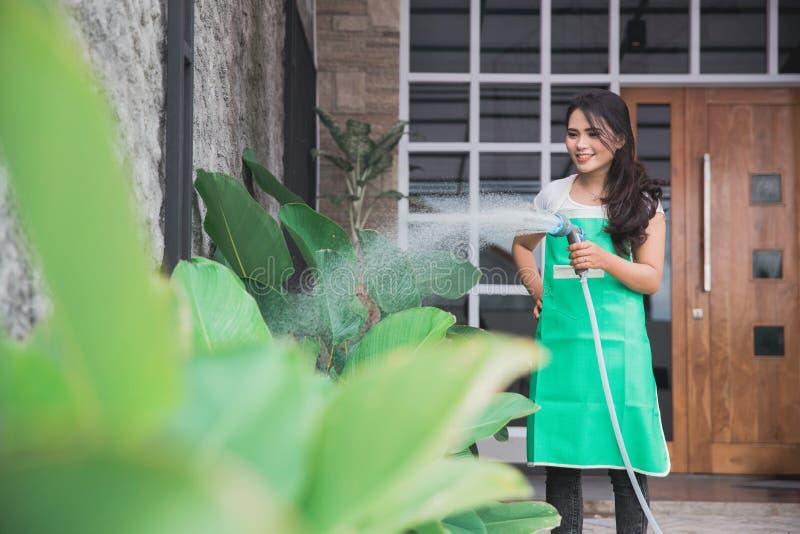Женщина моча ее сад стоковые фотографии rf