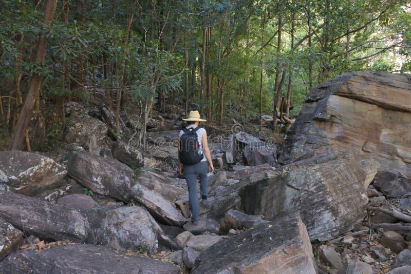Женщина на северных территориях Австралии национального парка Kakadu стоковое фото rf