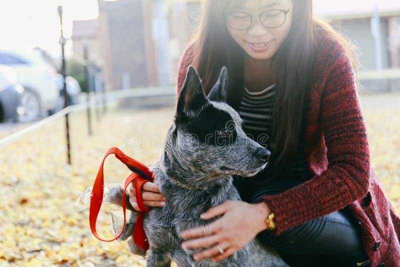 Женщина нежно обнимая и смотря ее doggy австралийца любимчика стоковая фотография rf