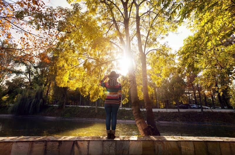 Женщина около дерева на парке осени стоковое фото