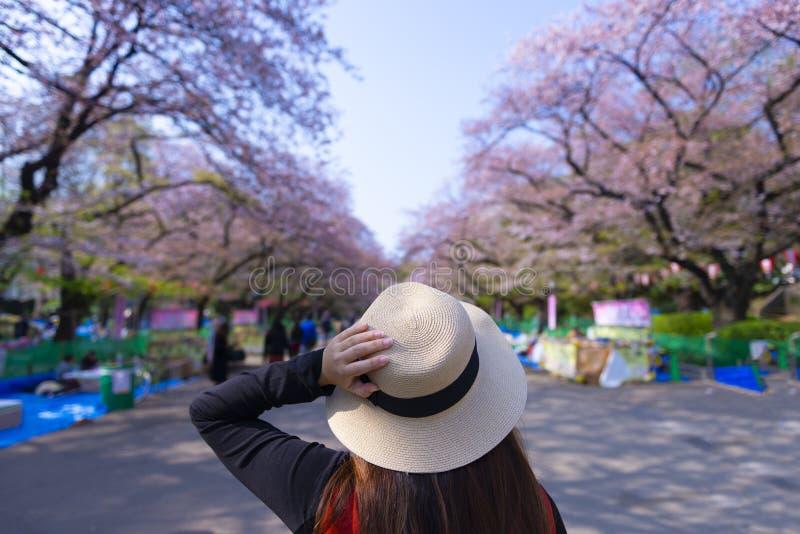 Женщина осмотр достопримечательностей внутри парка Ueno во время вишневого цвета фестиваля Hanami весны стоковые фотографии rf