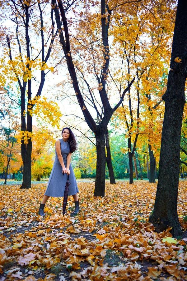Женщина позирует с зонтиком и осенними листьями в городском парке, портрет на улице стоковое изображение rf