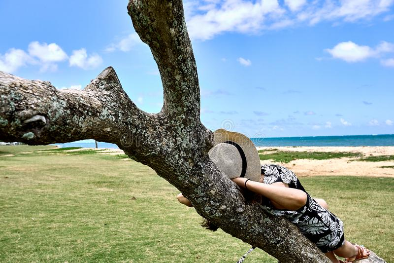 Женщина полагаясь на хоботе дерева на парке пляжа Kualoa региональном смотря небо и океан Гаваи стоковое фото