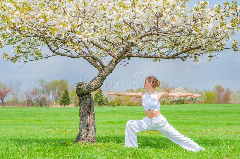 Женщина практикует йогу, делающ тренировку Virabhadrasana, стоя в представлении воина около дерева стоковая фотография rf
