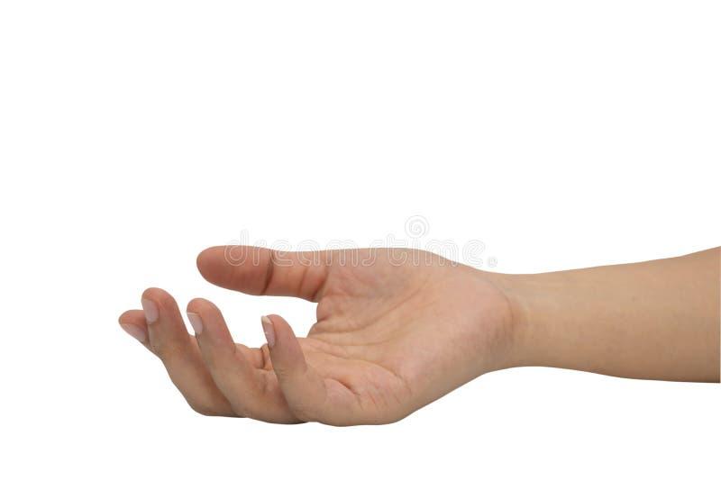 женщина предпосылки изолированная рукой белая стоковые фото