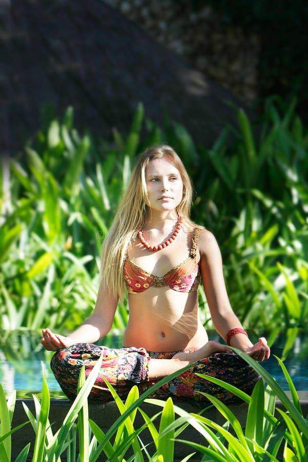 Download женщина предпосылки красивейшая естественная Стоковое Фото - изображение насчитывающей славно, пепельнообразные: 18395154