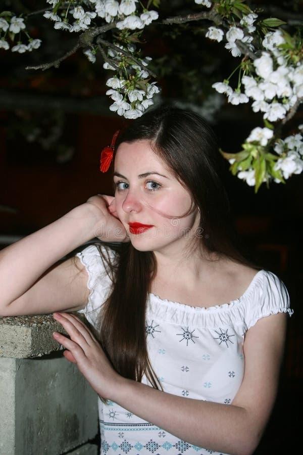 Download Женщина представляя с вишневым цветом Стоковое Фото - изображение насчитывающей hairpin, женственно: 41654946