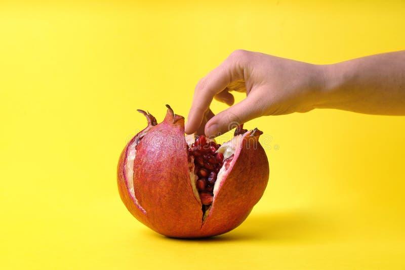 Женщина принимая семена гранатового дерева от плода стоковые фотографии rf