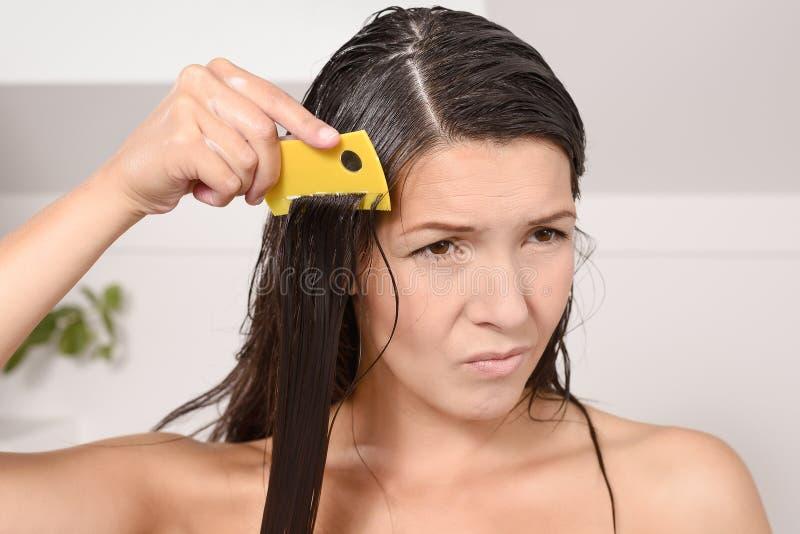 Download Женщина расчесывая вне вош в ее волосах Стоковое Изображение - изображение насчитывающей длиной, вош: 40585147
