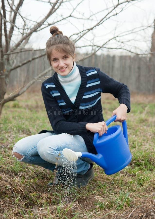 Женщина ростки bush стоковые изображения rf
