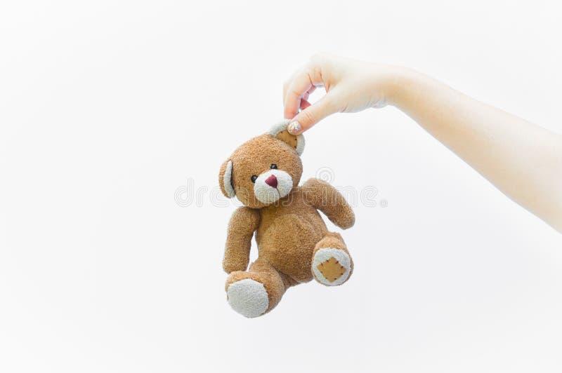 Женщина руки держа игрушку плюшевого медвежонка уха коричневую на белизне стоковое фото rf