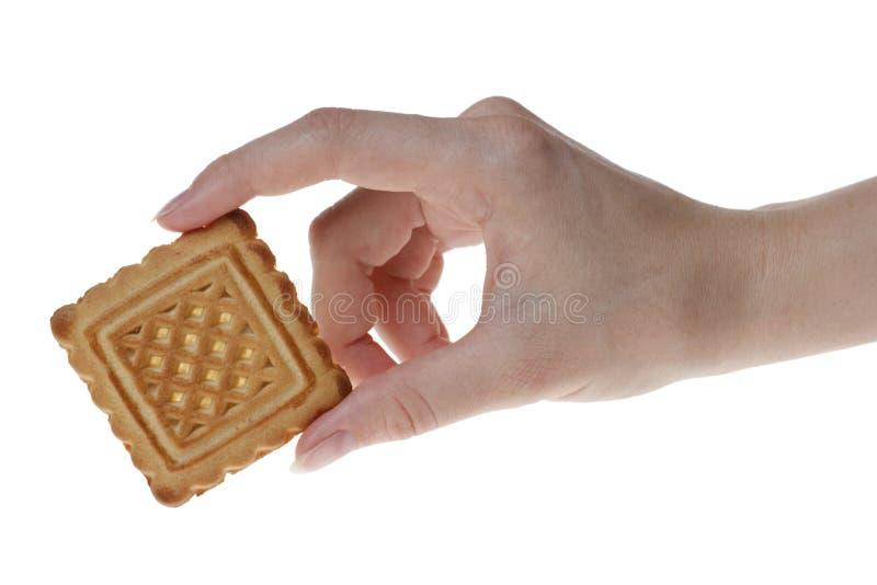 женщина руки s печенья вкусная стоковое изображение