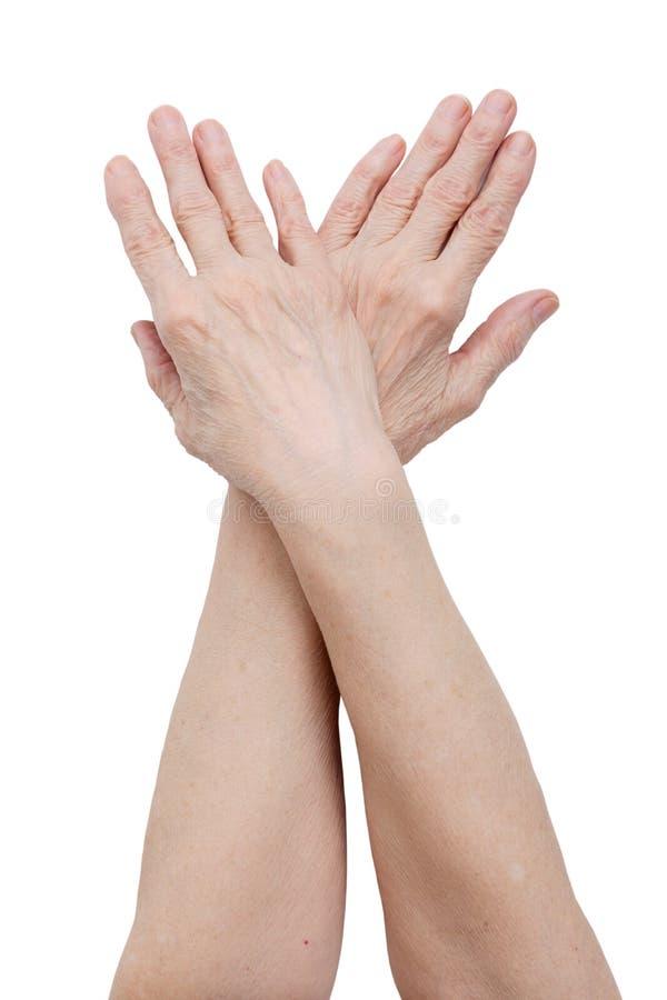 женщина рук пожилых людей стоковые фото