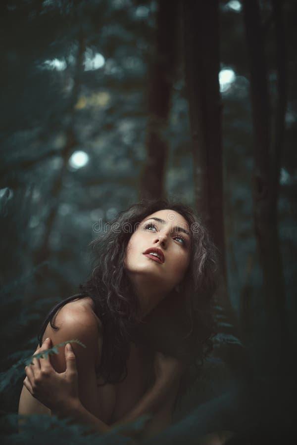 Женщина самостоятельно в мирном лесе стоковые фото