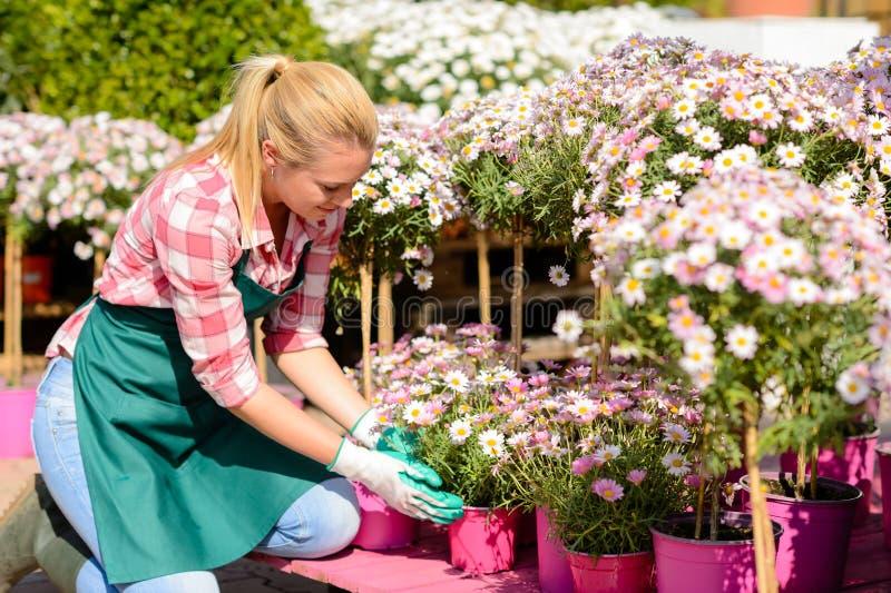 Женщина садового центра вставать в горшке цветками стоковые изображения rf