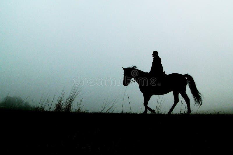 женщина силуэта лошади стоковое изображение rf