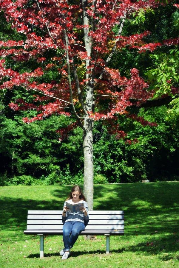 Женщина сидя на скамейке в парке читая книгу стоковое изображение rf