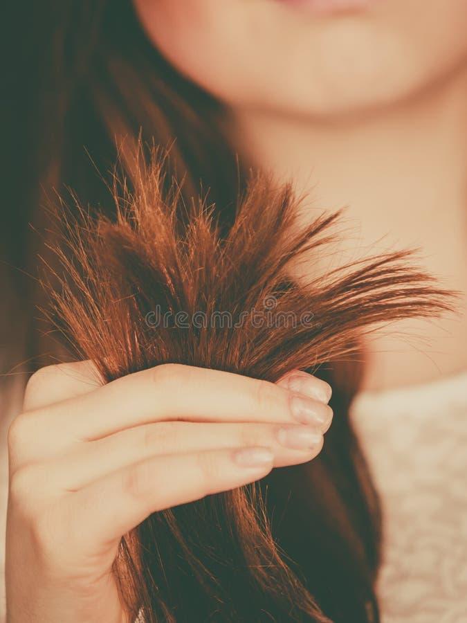 Женщина смотря ее концы сухих волос стоковая фотография