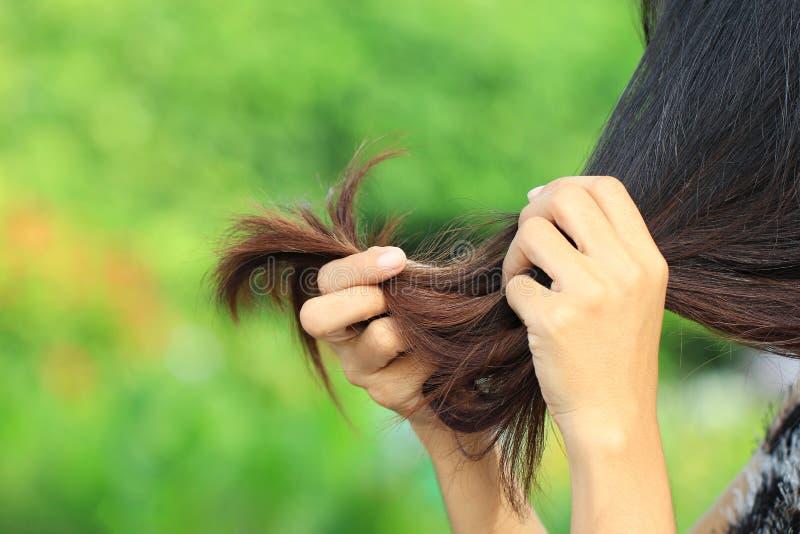 Женщина смотря поврежденные разделяя концы волос на предпосылке природы, концепции Haircare стоковые изображения rf