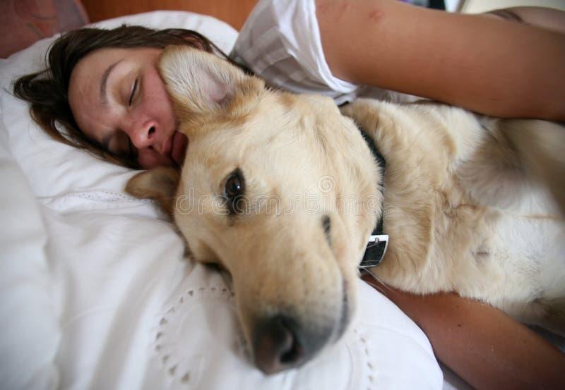 женщина собаки кровати стоковые изображения