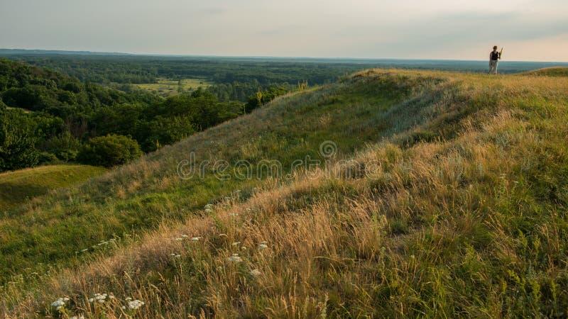 Женщина собирает целебные травы в одичалом холмистом ландшафте стоковые фото