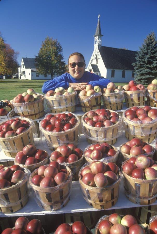 Женщина стоя за корзинами яблока стоковые фотографии rf
