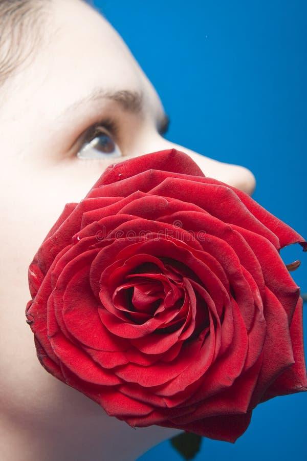 Женщина с красным цветом подняла стоковая фотография