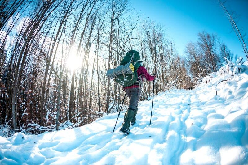 Женщина с рюкзаком и snowshoes в горах зимы стоковые фотографии rf