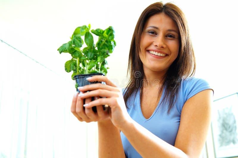 Женщина с травами стоковые изображения rf