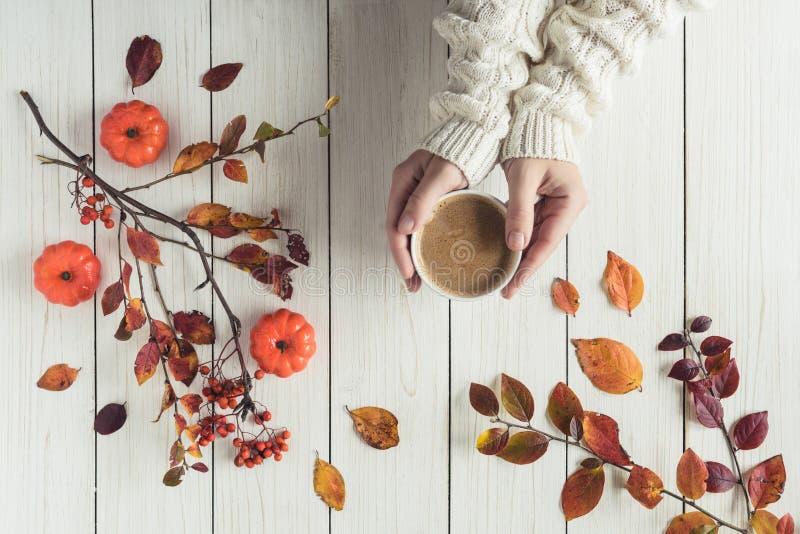 Женщина с чашкой кофе, листьями, маленькими тыквами и гребешком на досках белого ретро-дерева фон Осень, осень Плоская ложа, стоковое фото