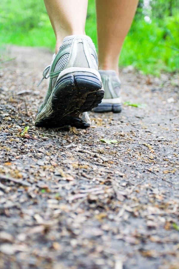 женщина тропки спорта ботинок пущи гуляя стоковое изображение