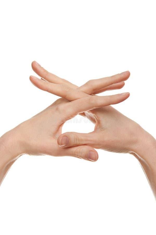 женщина формируя руки настилает крышу форма стоковые фото