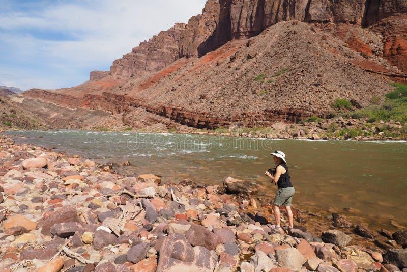 Женщина фотографируя реку Colrado и внутренний каньон в гранд-каньоне стоковая фотография rf