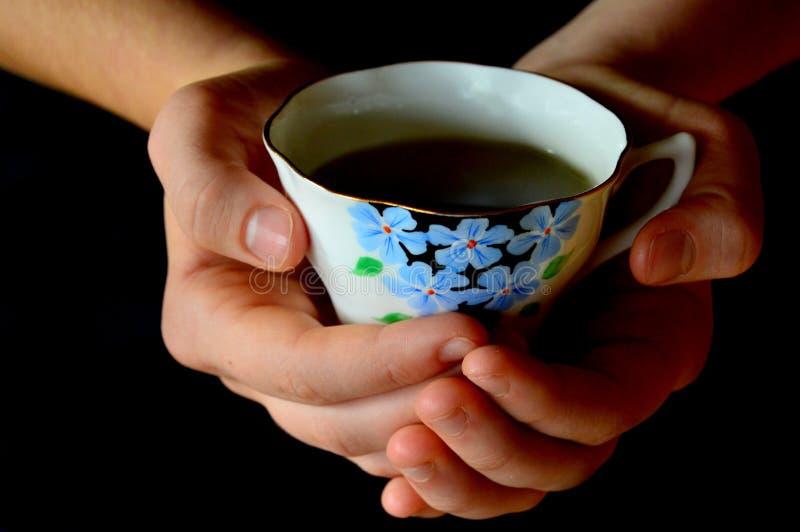 женщина чашки вручает чай удерживания стоковые изображения rf