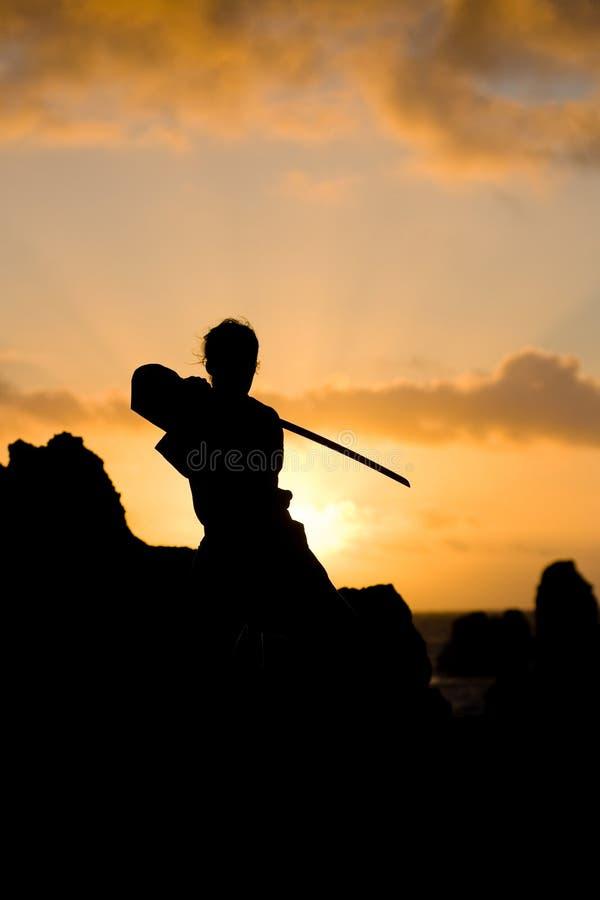 женщина katana стоковое изображение