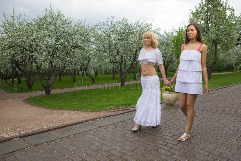 Download женщины весны 2 стоковое фото. изображение насчитывающей lifestyle - 18394232