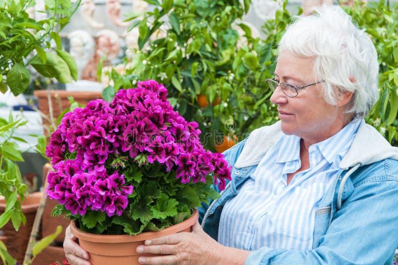 Женщины выбора цветки вне в горшке на садовом центре стоковые изображения rf