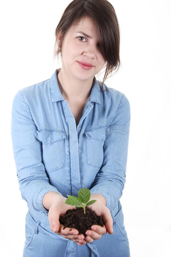 Женщины держа молодое дерево в руках стоковое изображение rf