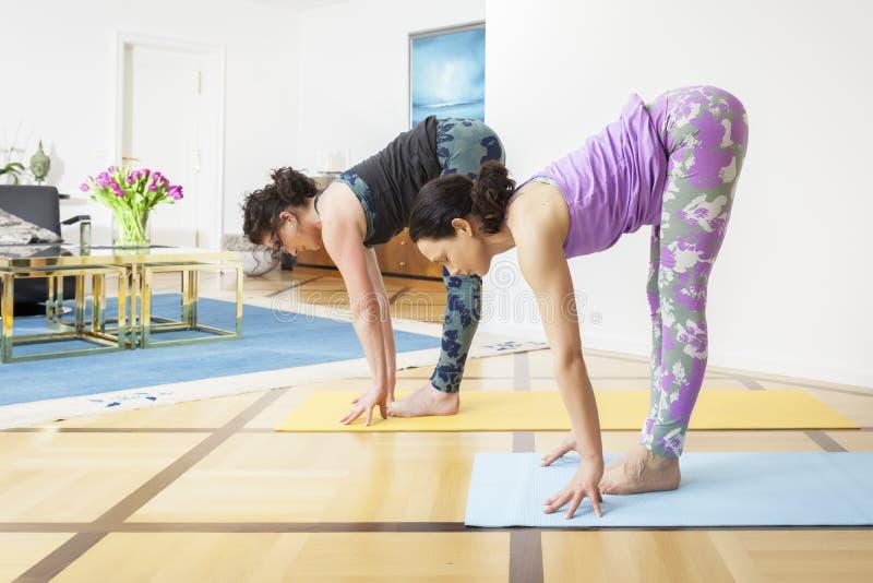 2 женщины делая йогу дома стоковые изображения rf