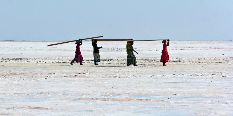 Женщины нося переклейку в пустыне стоковое фото
