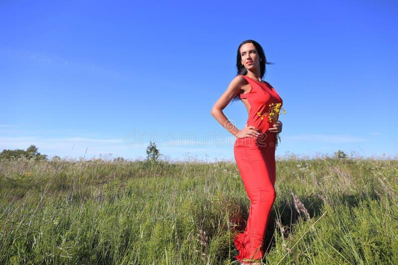 Женщины при цветок ослабляя на поле стоковые изображения rf