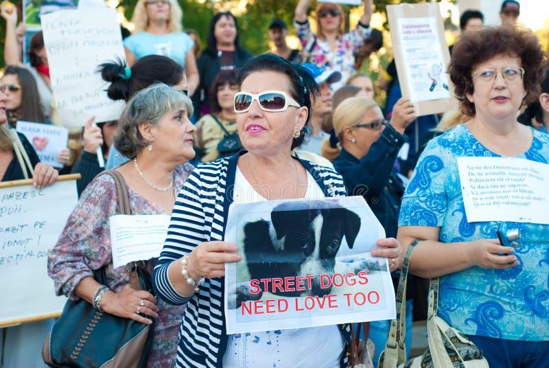 Женщины протестуя в Бухаресте против euthana собак стоковая фотография