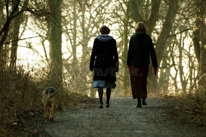 женщины собаки гуляя стоковая фотография