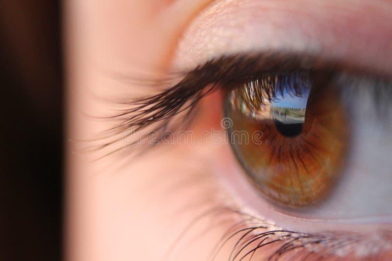 женщины студии съемки макроса глаза крупного плана молодые стоковая фотография rf