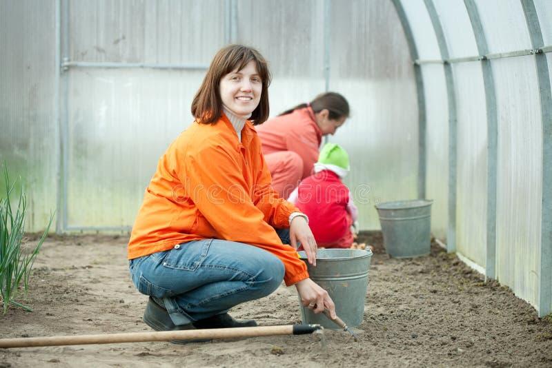 Женщины с ребенком работают на оранжерее стоковое изображение